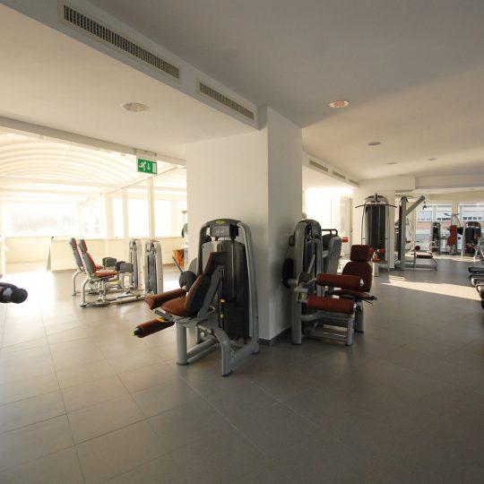 Palestra lungotevere suite for Piani artistici per artigiani con suite di artisti
